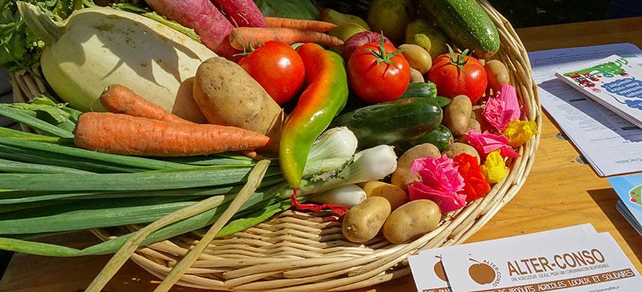 Où prendre ses paniers de fruits et légumes locaux, bio et de saison à Vaise ?
