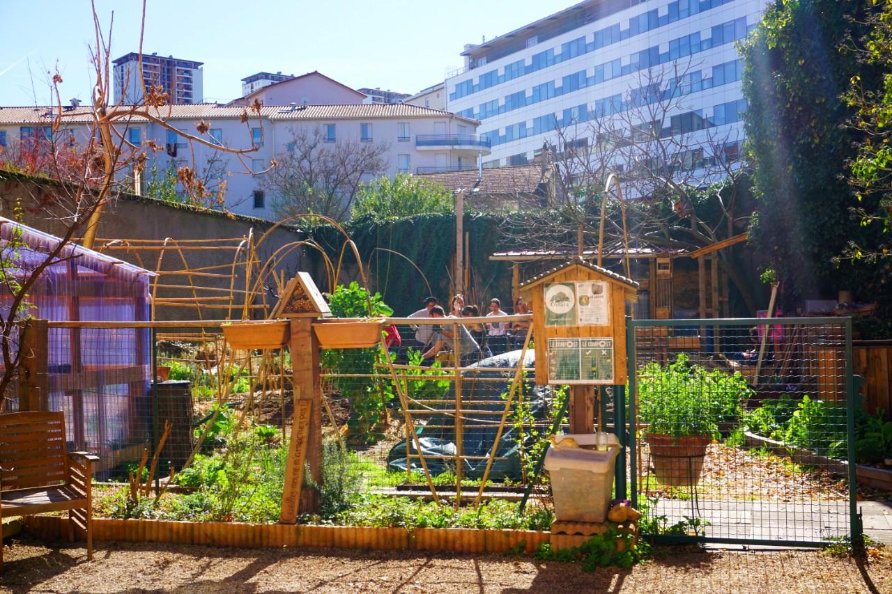 Une journée avec : l'association Ostara et son jardin expérimental à Vaise